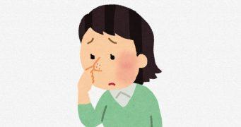 鼻の顔ダニ