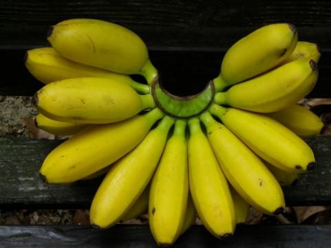 起立性調節障害とバナナ