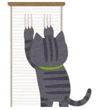 猫を飼っている家の売却