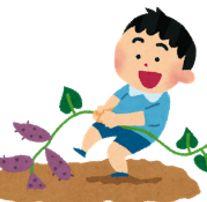 里芋の花言葉