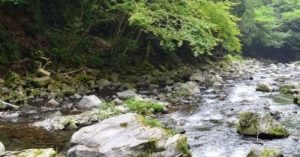 台風の後の川遊び