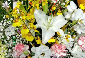 開店祝いと花
