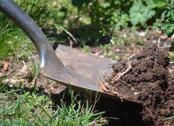 排水枡に木の根が入るのを防ぐ