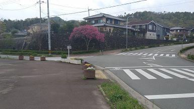 イオン猪名川から多田銀銅山に行く
