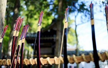 中間試験と弓道
