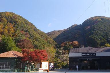 妙見山の紅葉のピークはいつか