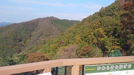 妙見山の紅葉の見頃のピークはいつか