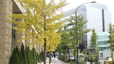 上京資金10万円で引っ越しする方法