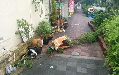 台風中のランニングは危険